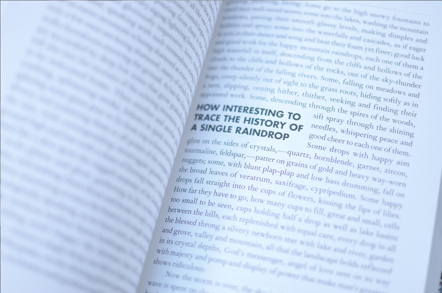 Inside image of a page with a pull quote in the book.