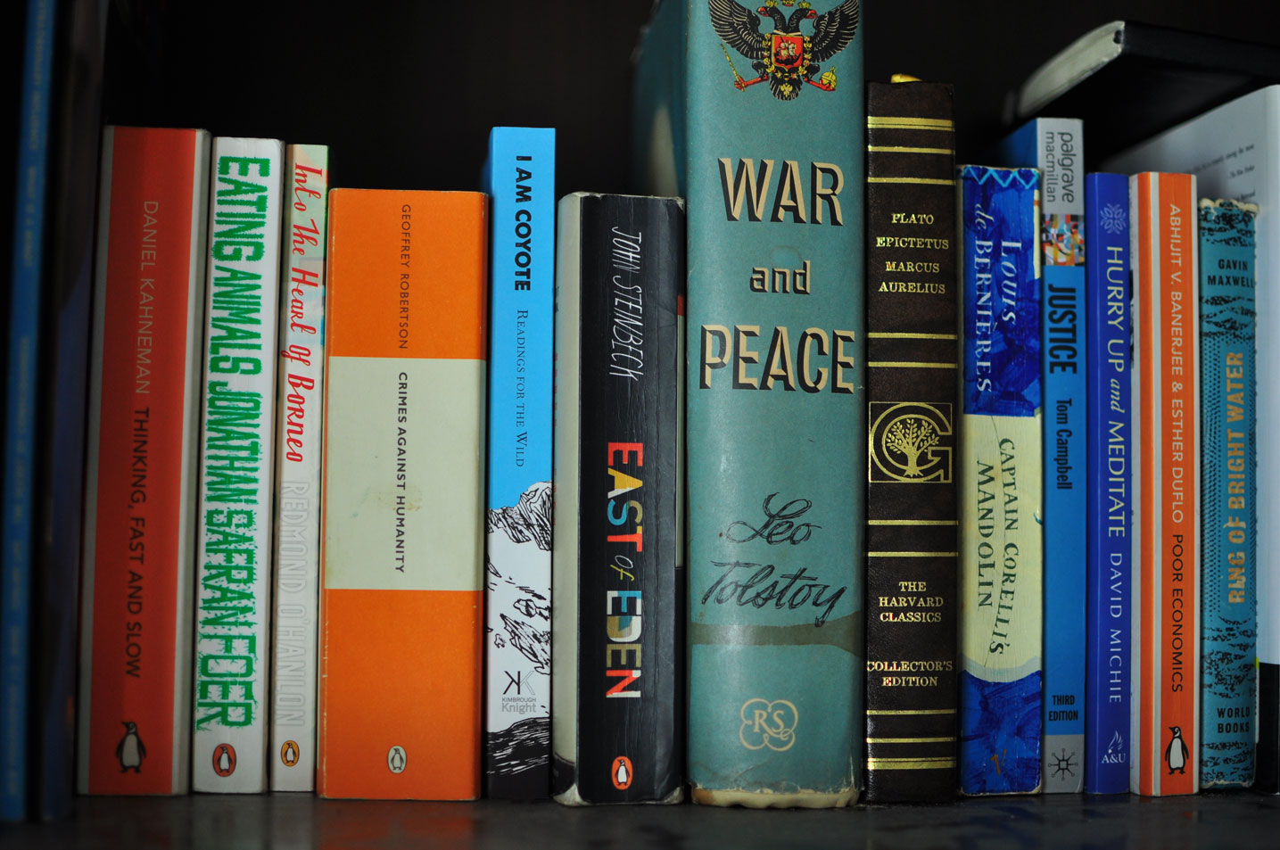 Book sitting in a book shelf with other classics like War and Peace and East of Eden